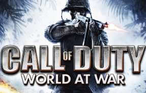 call of duty world at war server hosting