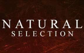 natural selection server hosting