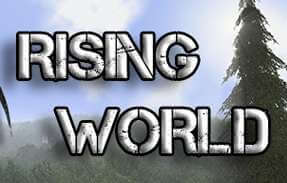 rising world server hosting