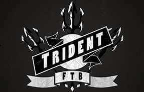 trident server hosting