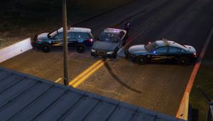 fivem cops - FiveM